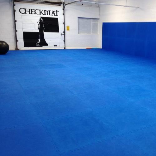 brazilian-jiu-jitsu-room-500