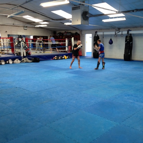 mixed-martial-arts-room-500